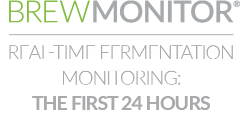 Real-time fermentation monitoring